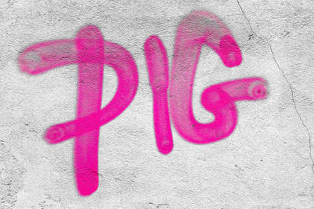 graffito: Pig word written on the wall with pink spray.