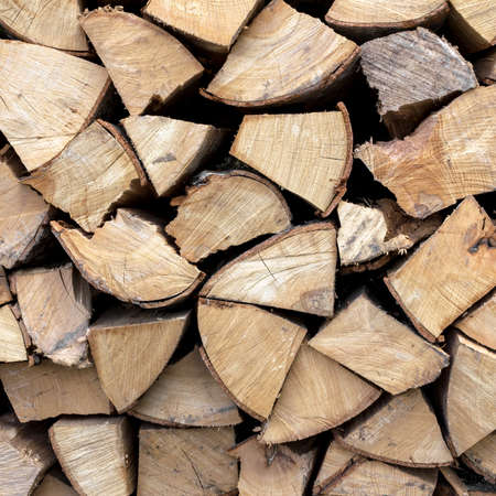 woodpile: Firewood neatly stacked in the woodpile