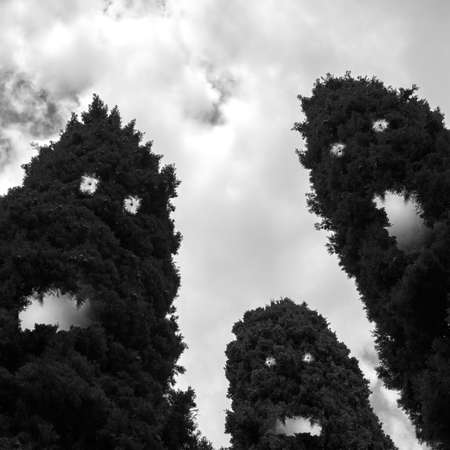 evil eyes: Creepy trees with evil eyes, hungry mouths and teeth (for Halloween themes).