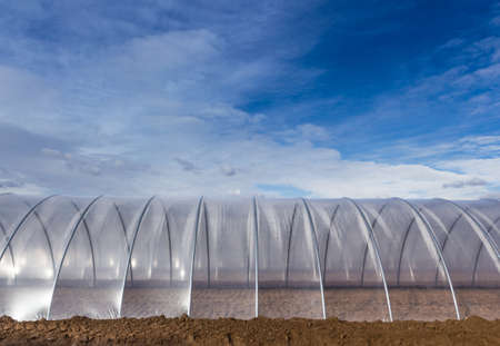Greenhouse tunnel from polythene plastic on an agricultural field against the blue sky Stock Photo