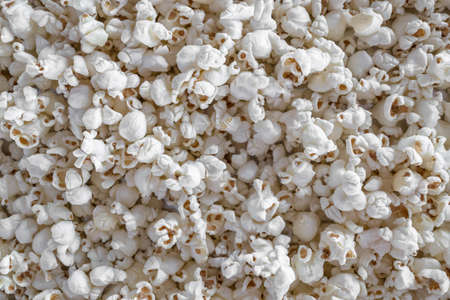 Popcorn maize. Ideal for textures, backgrounds and concepts.