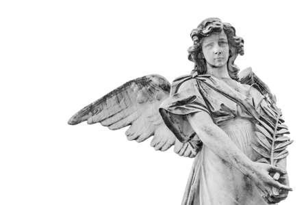 Statue of an angel with olive branch isolated on white background