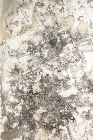 Effects of damp on plaster, damaged wall texture.