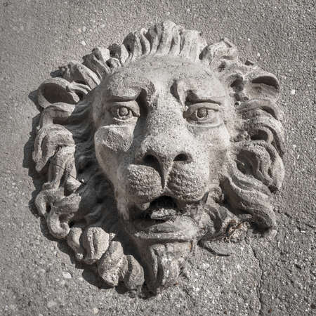 The lion of Venice, a sculptured engraving on a wall. It can be used as background.