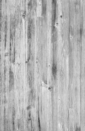 Monochrome wood background. Close-up white wood texture. High resolution picture of blank space for many uses. 版權商用圖片