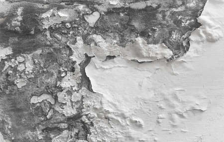Peeling paint indicating damp on the wall. Water Leaks. Ideal for backgrounds and concepts.