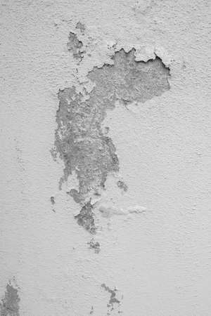 Gray and white peeling plaster. Abandoned wall. Ideal for backgrounds or concepts.