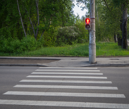 Pedestrian crossing zebra with traffic lights. Red light