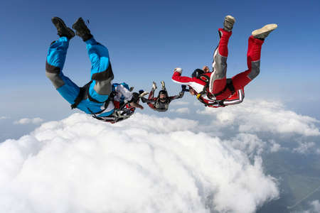 freefall: Group of skydivers in freefall