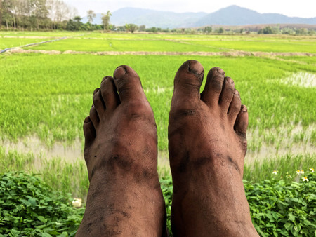 closeup Dirty footman,Dirty feet in the backyard
