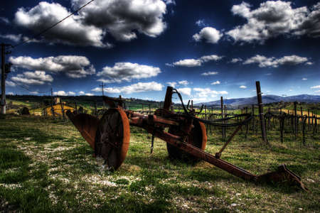 An ancient plough in front of a vineyard in spring Archivio Fotografico