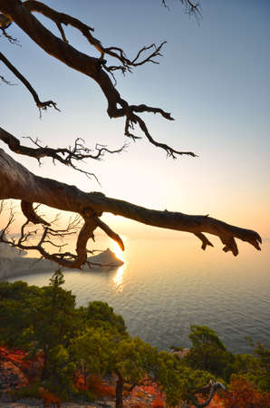 Beautiful seascape. Sea and rock at the sunset. photo