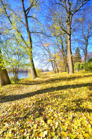 lake dwelling: autumn park on the lake Stock Photo
