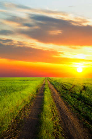 dirt road runs along the field with green grass at sunset Stock Photo - 14133025