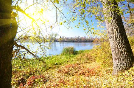 beach front: autumn park on the lake Stock Photo
