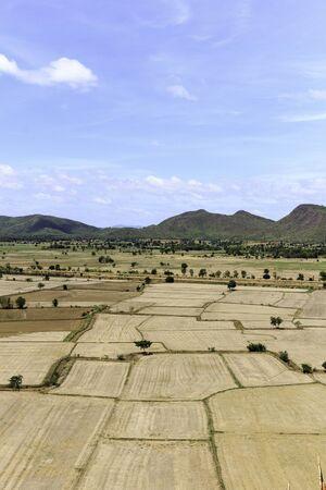 barren: Paddy fields barren and empty.