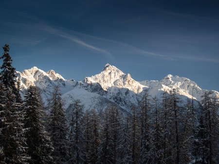 treeline: Winter panorama of the Piz Lischana ,Engadine, Switzerland