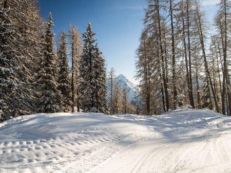 skipiste: Ski mit dem Panorama der Berg Sesvenna Gruppe, Engadin, Schweiz laufen