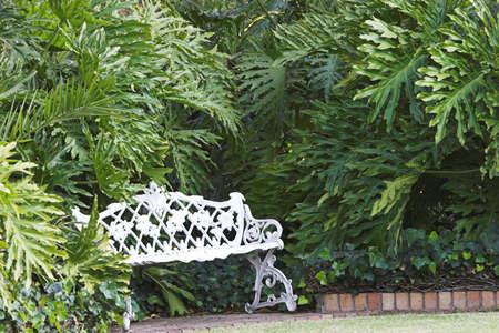 quite time: White bench in garden