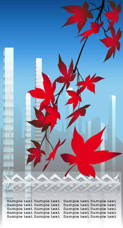 Autumn foliage on a background of morning city in clear sunny morning