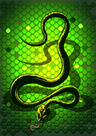 Black snake in front of green background