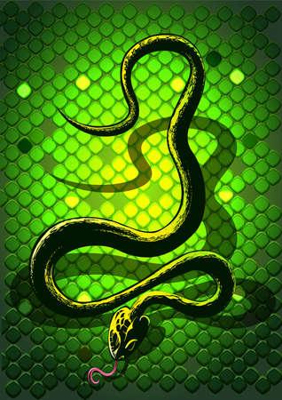 serpent noir: Serpent noir devant un fond vert