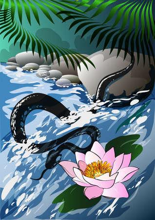 serpent noir: le serpent noir chasse dans une crique t�t le matin