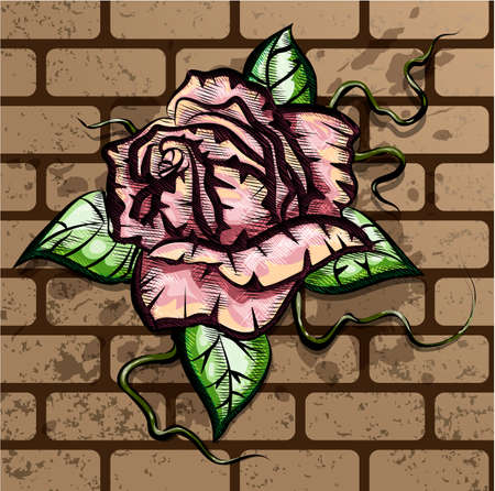 Illustration with rose growing on the brick wall drawn in tattoo style