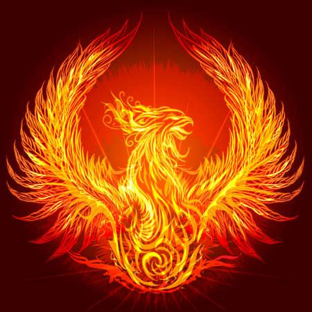 Illustration with burning phoenix drawn in heraldic style Illustration