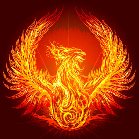 Illustration with burning phoenix drawn in heraldic style Illustration