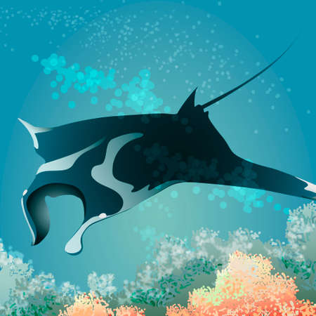 Manta ray floating against coral reef Stock Photo