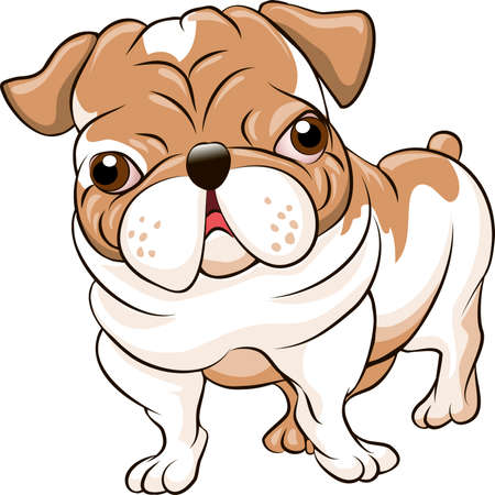 Funny illustration with bulldog puppy drawn in cartoon style