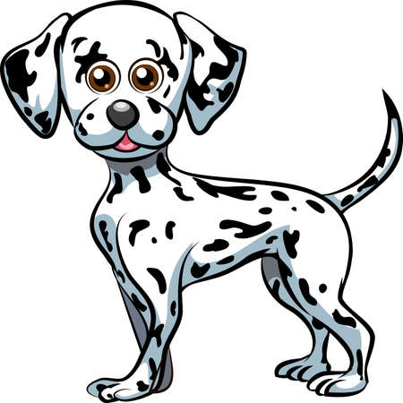 dalmatian puppy: Funny illustration with cute dalmatian puppy drawn in cartoon style
