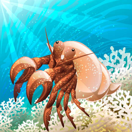 hermit: Illustration with hermit crab in coral reef against seabed background drawn in cartoon style