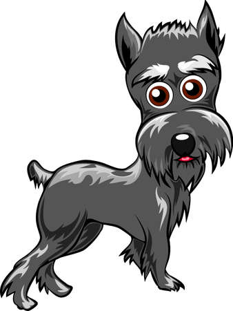 Funny illustration with schnauzer puppy drawn in cartoon style