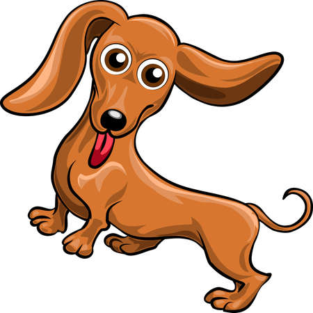 Funny illustration with dachshund drawn in cartoon style