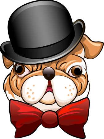 Grappige illustratie met bulldog in een bolhoed en vlinderdas getrokken in cartoon stijl