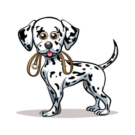 dalmatian puppy: Dalmatian puppy with dog lead in his mouth. Good for Pet Club emblem. Isolated on white background.