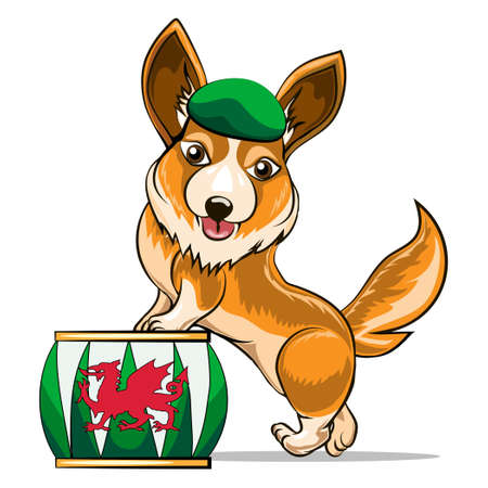 watchdog: Illustration of corgi with dragon drum drawn in cartoon style. Illustration