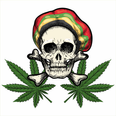 Skull in Rastaman cap and Marijuana leaves. Isolated on white background.