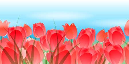 Flower horizontal seamless border. Red tulips against blue sky. Stock Photo