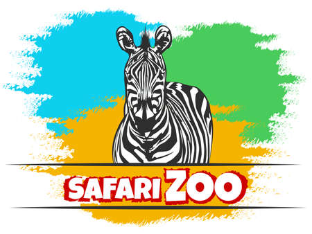Animal Zoo Emblem with Zebra against colorfuil background. Vector illustration.