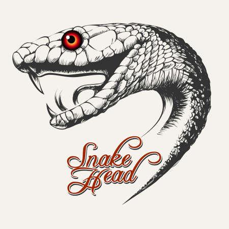 Testa di serpente Illustrazione