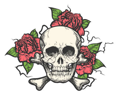 Human skull with rose flowers. Vector illustration in tattoo style.