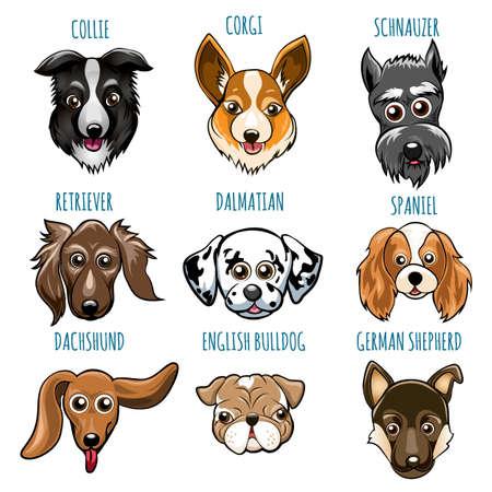 Set of Various Dog Head. Spaniel, bulldog, retriever, dalmatian and other breed. Vector illustartion isolated on white. Stock Illustratie