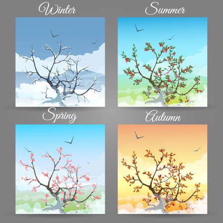 Reeks van kersenboom in verschillende seizoenenillustratie.