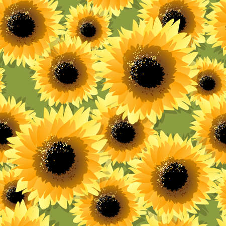 Seamless pattern with sunflowers drawn in cartoon style. Vector illustration