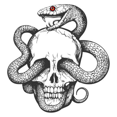 Skull and Snake. Tattoo art Hand drawn vintage vector illustration