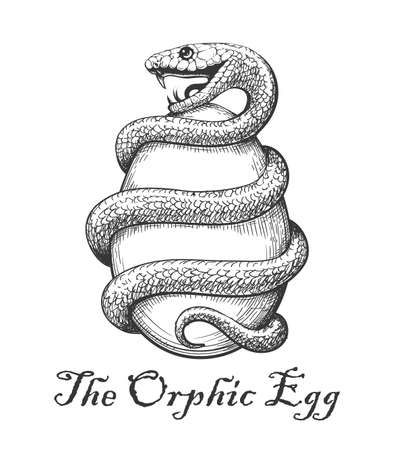 Snake with Egg. Esoteric Orphic Egg Symbol drawn in engraving style. vecto lustration.