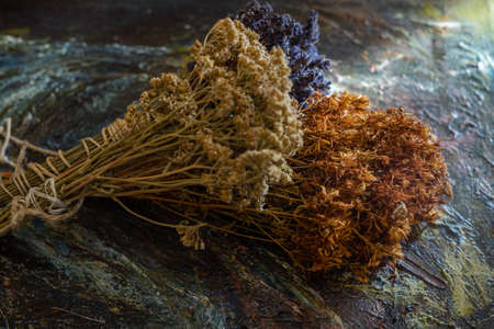 Bunches of medicinal herbs. Herbal medicine. Close up.